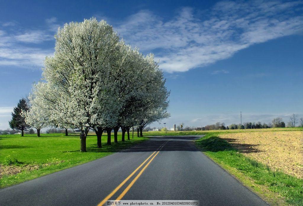 公路 蓝天 白云 柏油路 树木 道路 摄影 自然风景 自然景观 72dpi jpg