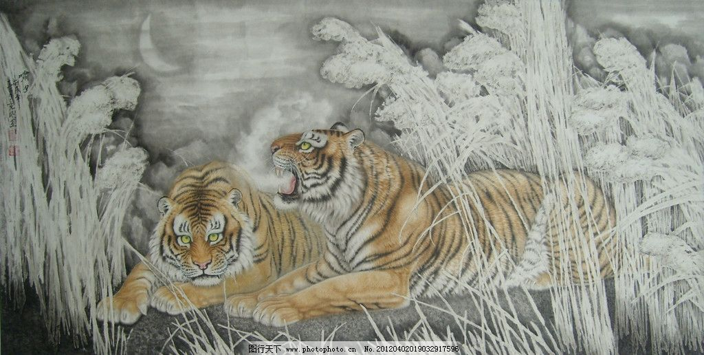 工笔 线描 线条 墨迹 勾线 老虎 老虎工笔画 工笔老虎画 虎纹 动物