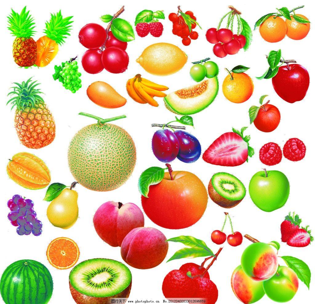 水果图片 水果 菠萝 哈密瓜 苹果 猕猴桃 西瓜 桃子 杏 桔子 杨桃 梨