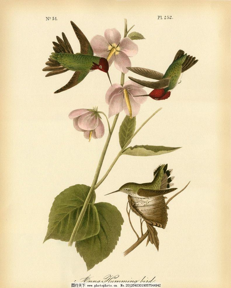 花鸟装饰画 装饰画 卡纸画 装饰画素材 小鸟 花卉 树枝 绿叶 粉色花卉