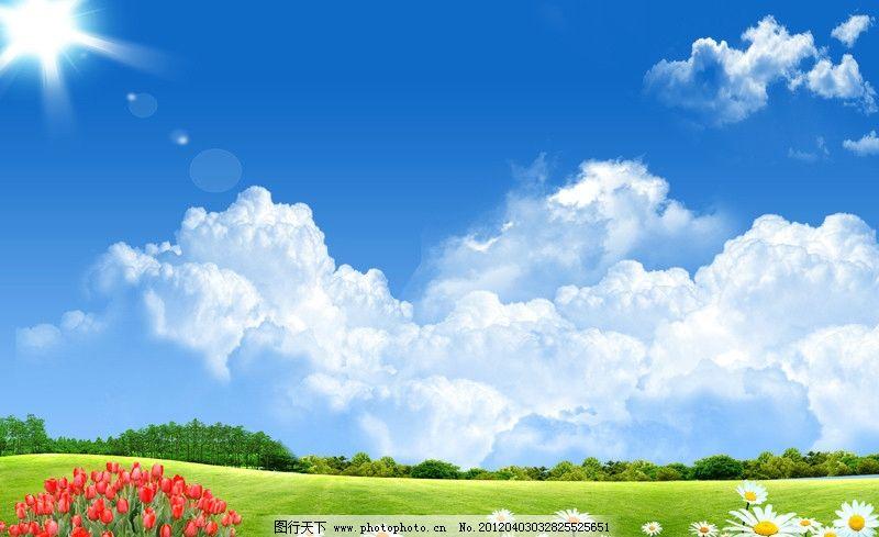 森林 绿色 大自然 自然风景 草地 小草 小树 树木 田野 草原 蓝天