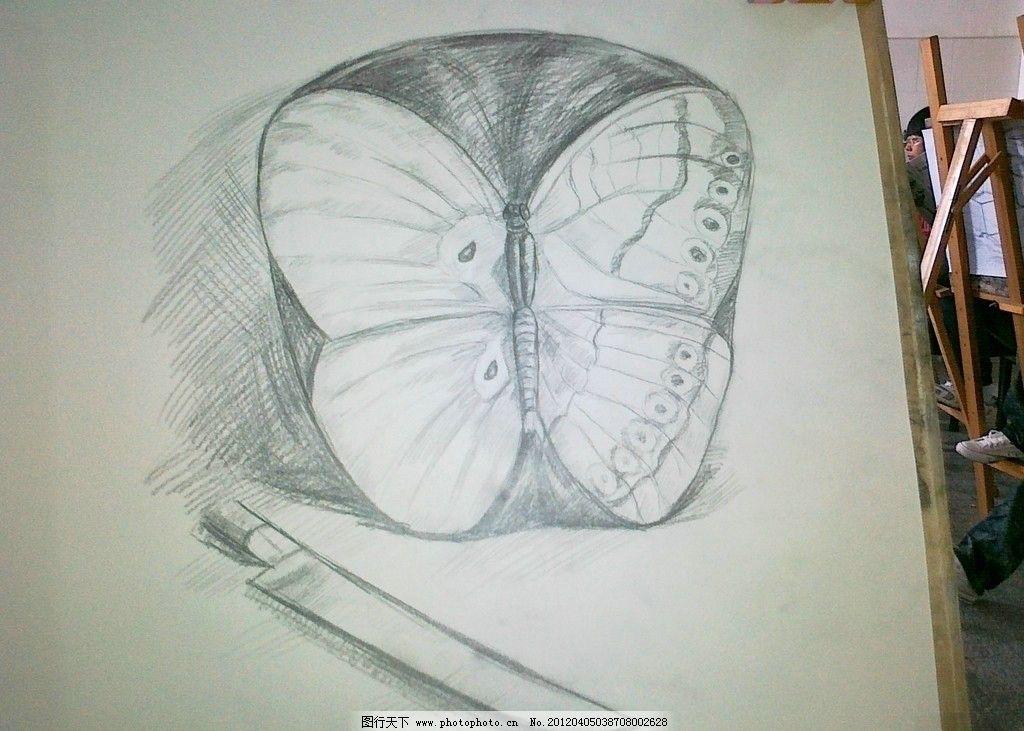 蝴蝶和苹果 素描 蝴蝶 苹果 美术绘画 文化艺术 摄影 300dpi jpg图片