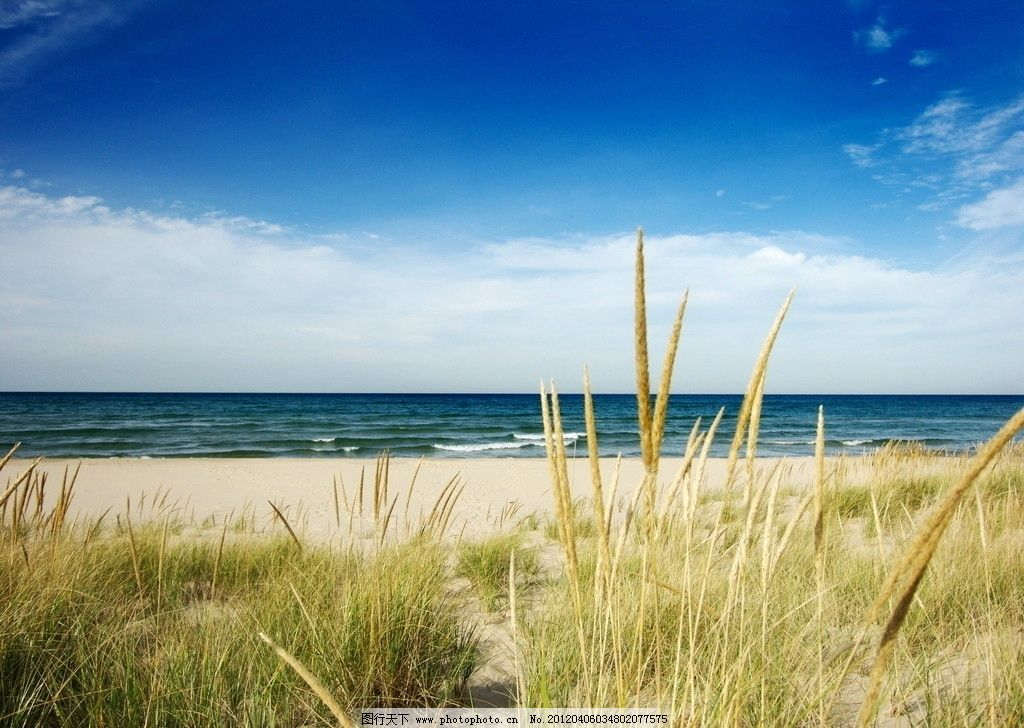 草 碧海 蓝天 沙滩 滩涂 沙子 沙石 大海 海洋 海边 海岸 海滩 海风