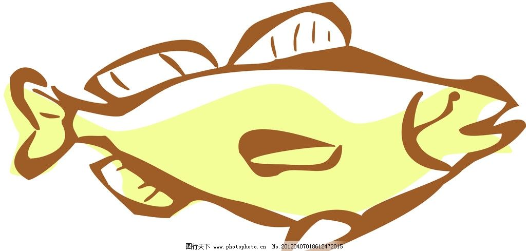 海鱼线条线描特写 轮廓线条图 轮廓图 线条图 线条 海鱼 海洋生物