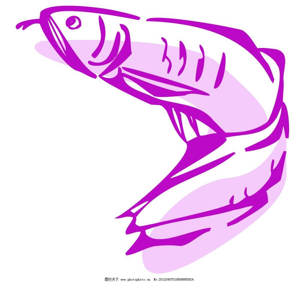 金龙鱼 轮廓线条图 轮廓图 线条图 线条 海鱼 海洋生物 其他 动漫动画