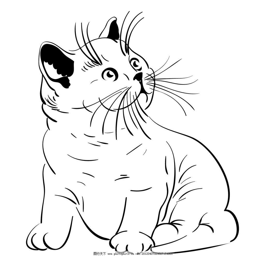 设计 线条 线描 胡子 可爱小猫 顽皮 手绘 矢量图案 素材 黑白线描