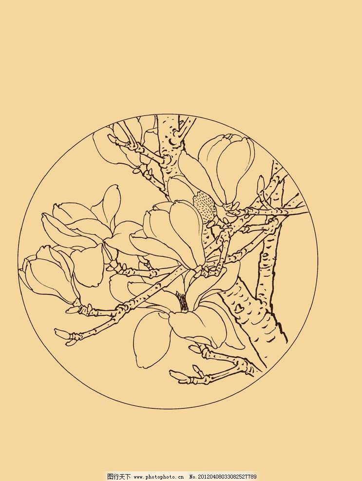 玉兰 玉兰花 白玉兰 花卉 白描 线描 勾勒 中国画 扇面 古典