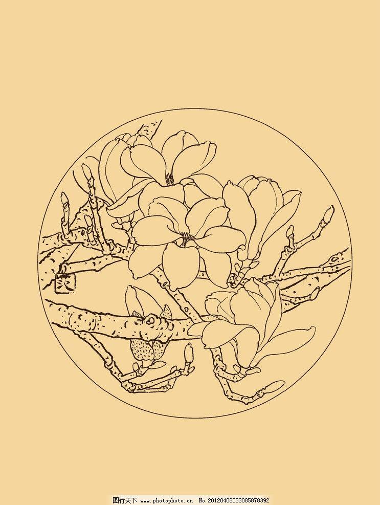 设计图库 psd分层 其他  玉兰 玉兰花 白玉兰 花卉 白描 线描 勾勒
