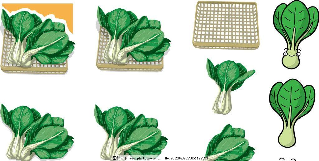 上海青 蔬菜图谱 图谱 手绘上海青表情 绿色 健康 营养 蔬菜 食材