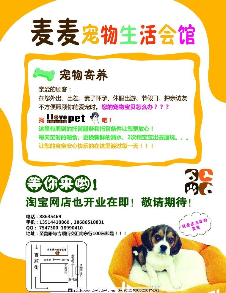 宠物宣传单 dm宣传单 源文件