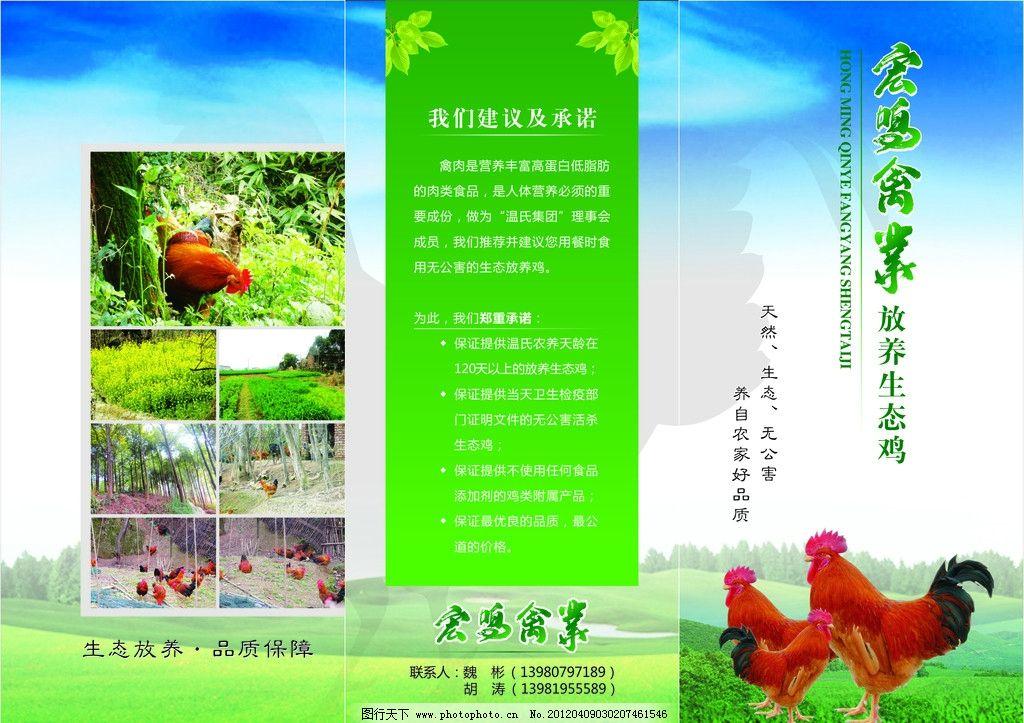 温氏生态鸡折页图片_展板模板_广告设计_图行天下图库