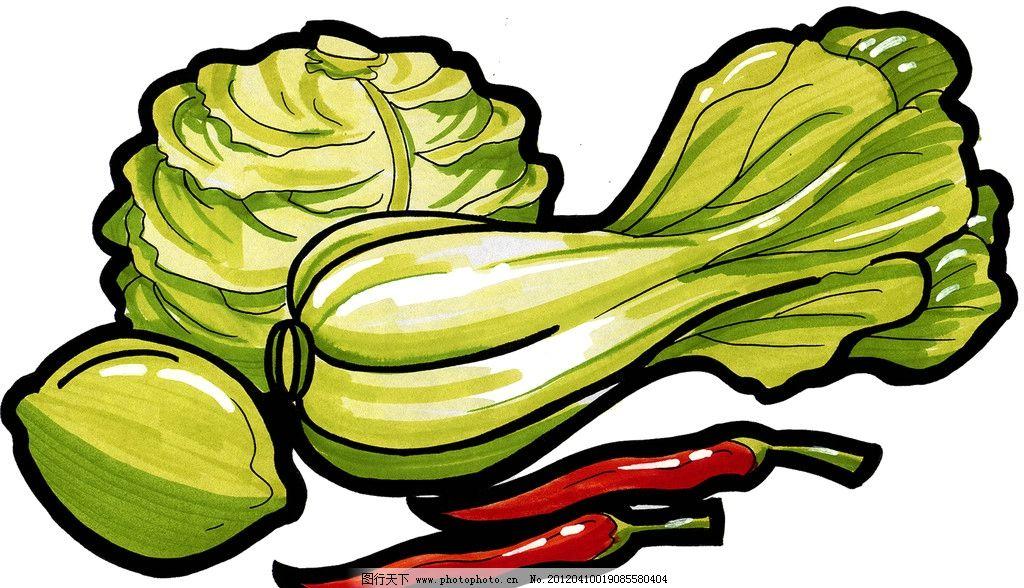 青菜 手绘美食 包菜 辣椒 马克笔手绘美食 餐饮美食 手绘效果美食图