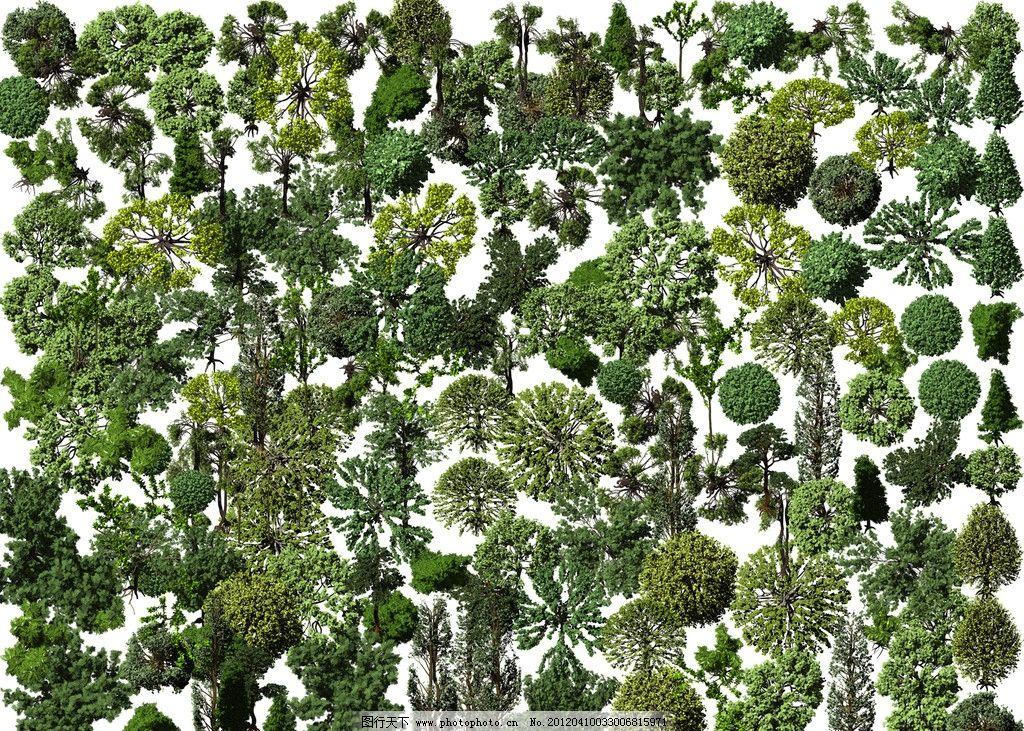 高清鸟瞰植物图片