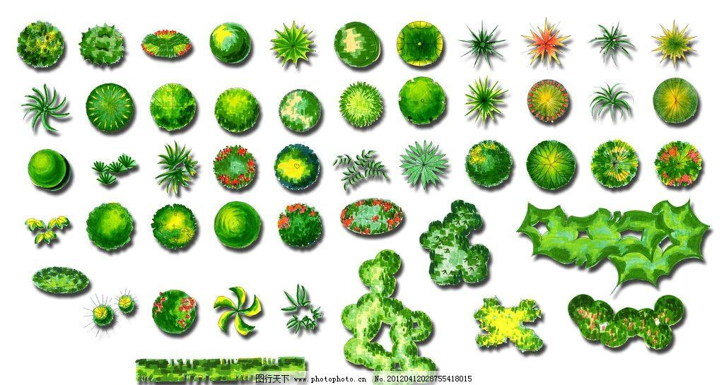 植物 图例 ps 素材 园林设计 环境设计 源文件 200dpi psd