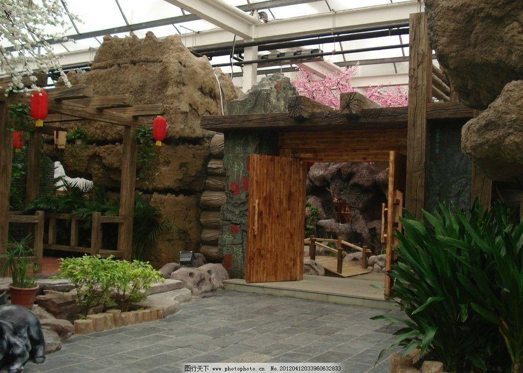 假山 风景 室内装饰 草木