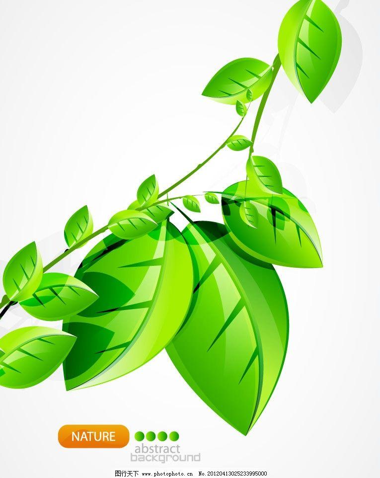 树枝绿叶背景图片