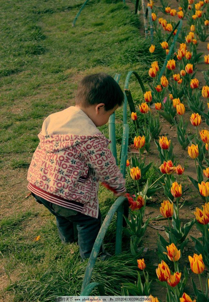 小黄花 花朵 幼儿