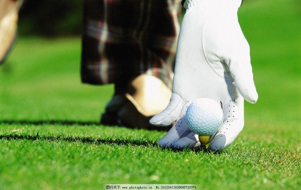 高尔夫 高尔夫球 高尔夫球场 高尔夫球杆 打高尔夫 草皮 草地 绿地