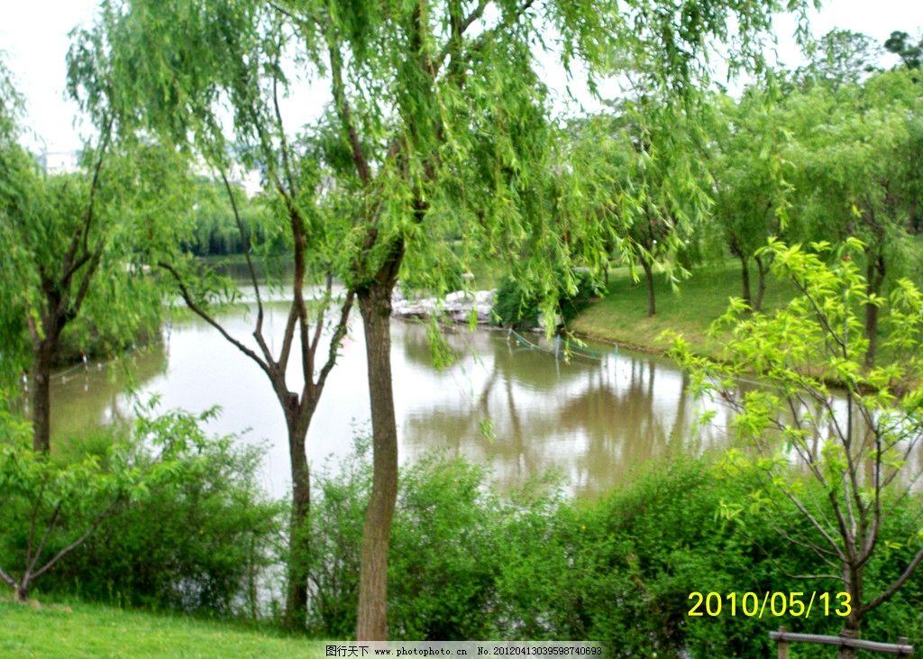 公园景观 绿地 公园 草地 小路 上海 春天 小河 柳树 园林建筑 建筑