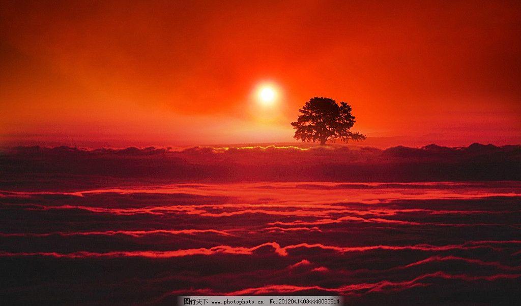 夕阳 云海 落日 夕阳西下 树 山 远山 红太阳 晚霞 红霞 风景 精美