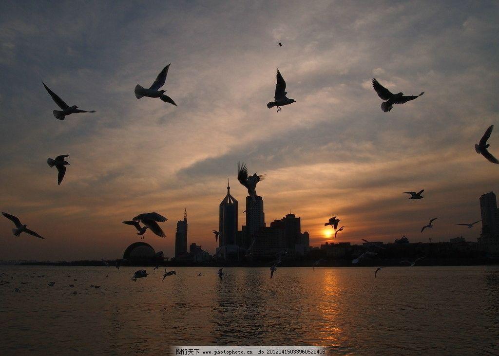 青岛栈桥落日 风光 大海 海滩 沙滩 海鸥 海鸟 岛类 飞翔 晚霞