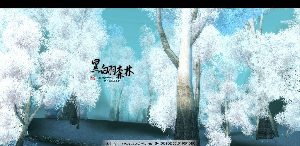 黑白羽 森林图片