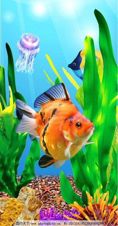 海底 鱼 鱼缸 金鱼 海草 珊瑚 水母 热带鱼 红色 背景 高清 石头 漂亮
