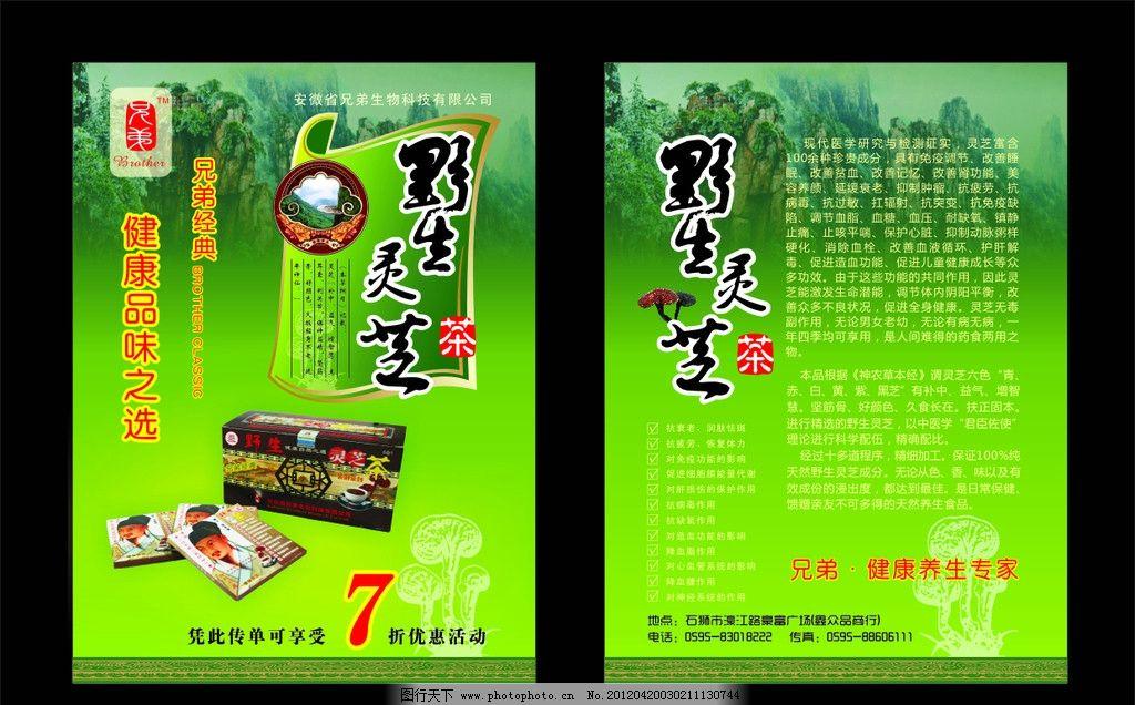dm单 宣传单 健康食品