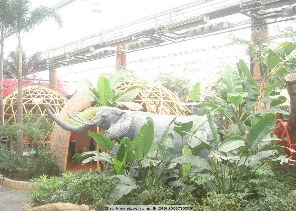 大象动物 大象 芭蕉 小屋 野生动物 生物世界 摄影 72dpi jpg