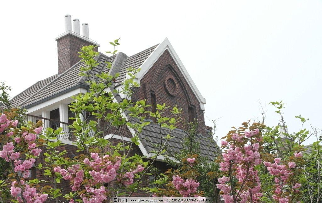 英式 高贵 美丽 樱花 别墅区