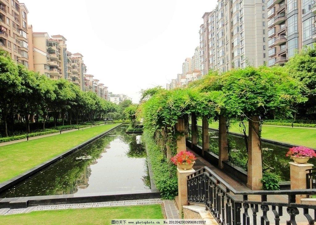 花园小区 高档住宅 绿化 池塘 住宅区 豪华小区 园林建筑 建筑园林图片