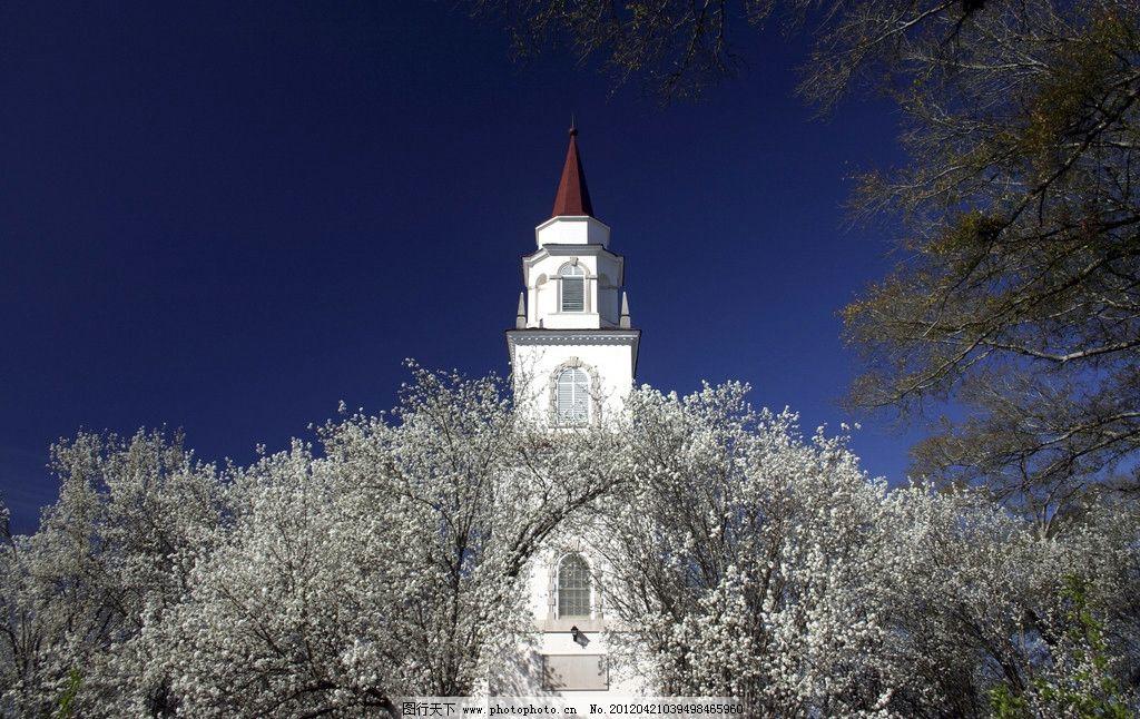 教堂摄影 建筑 十字架 圆顶 楼房 高楼 树木 树叶 蓝天 建筑摄影