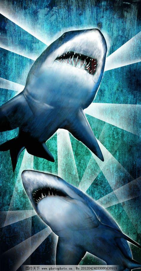 高清分层鲨鱼 海洋 动物 蓝色 光线 牙齿 眼睛 源文件