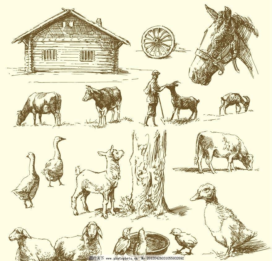 农场动物简笔画彩图