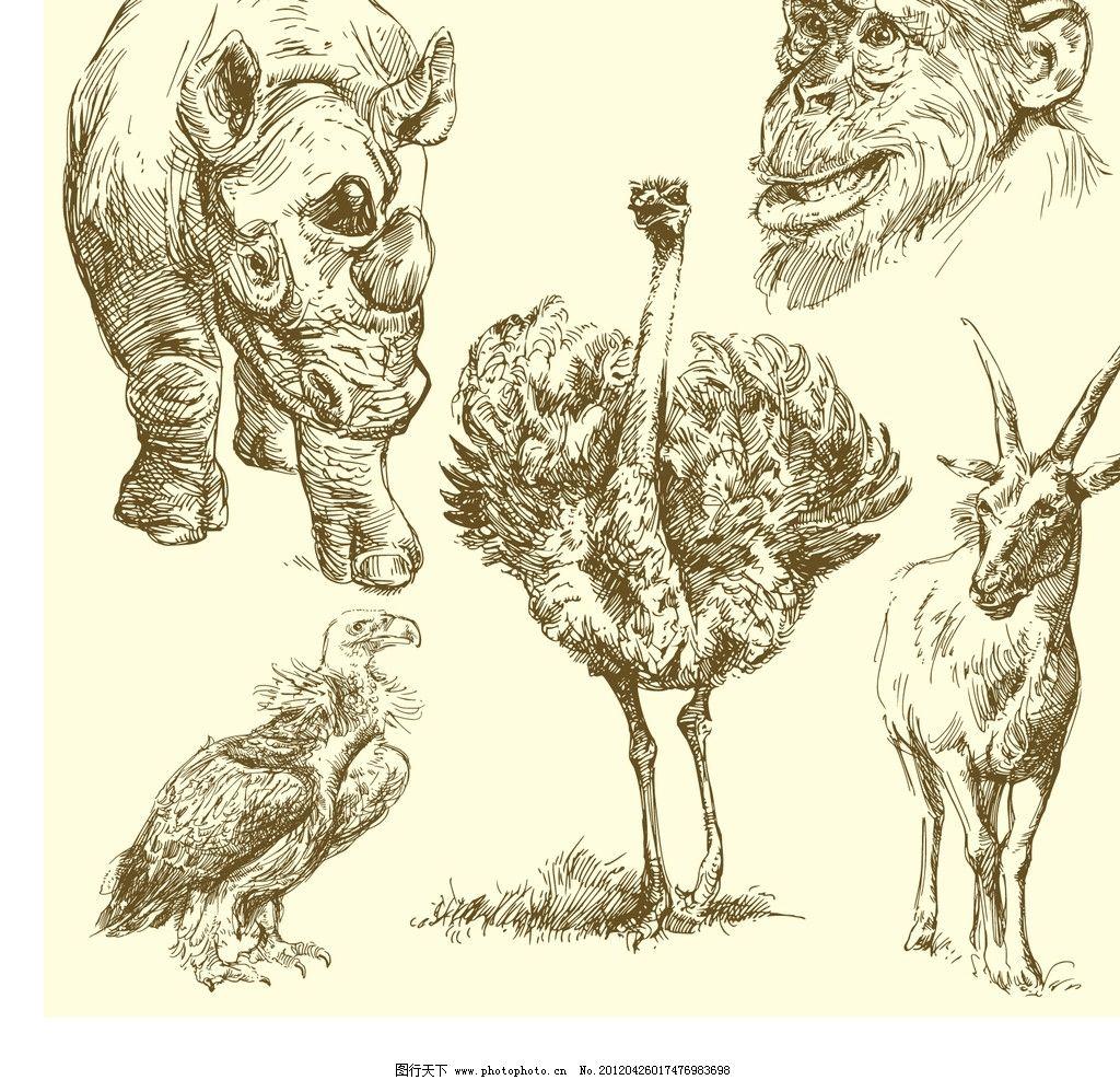 手绘动物 手绘 犀牛 山羊