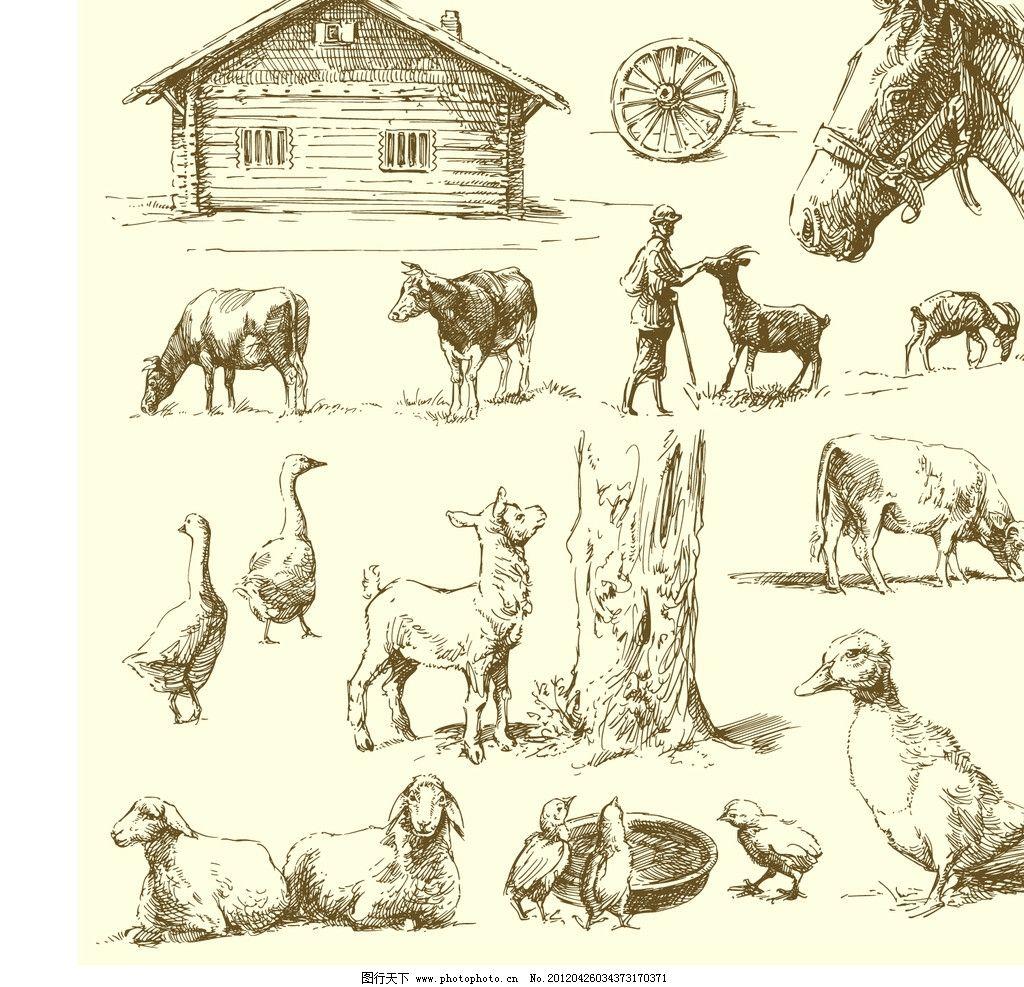 手绘动物图片_其他_旅游摄影_图行天下图库