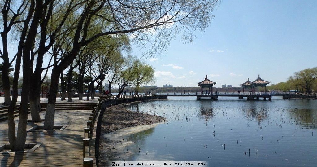 南湖风景 南湖 春天 风景 晴天 水边 春暖花开 公园 柳树 湖边 木板