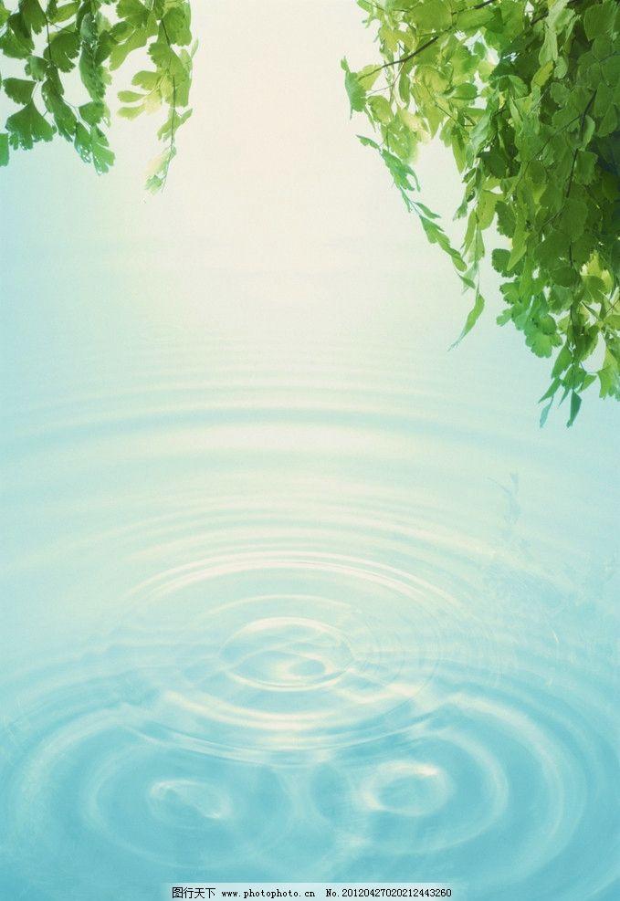 阳光 绿色 清新 叶子 光芒 光 清晨 梦幻 水纹 背景底纹 底纹边框