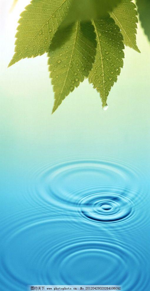 绿叶 绿色 清新 叶子 水纹 水滴 背景底纹 底纹边框 设计 300dpi jpg