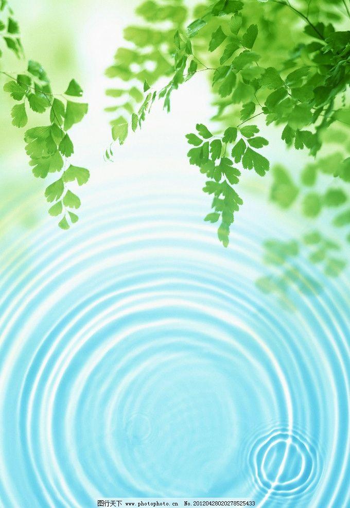 绿叶 阳光 绿色 清新 叶子 水纹 背景底纹 底纹边框 设计 300dpi jpg
