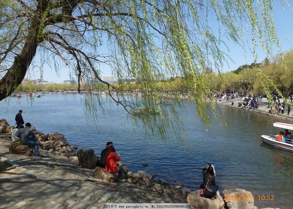 南湖风景 南湖 春天 风景 晴天 水边 春暖花开 公园 柳树 湖边 倒影