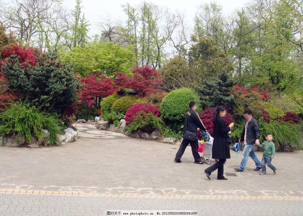 公园风景 树木 绿叶 红叶 游客 儿童推车 园林建筑 建筑园林