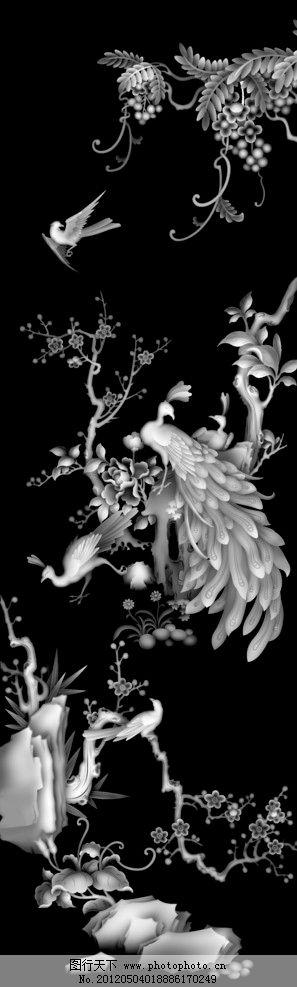 花鸟 灰度/灰度 花鸟图片