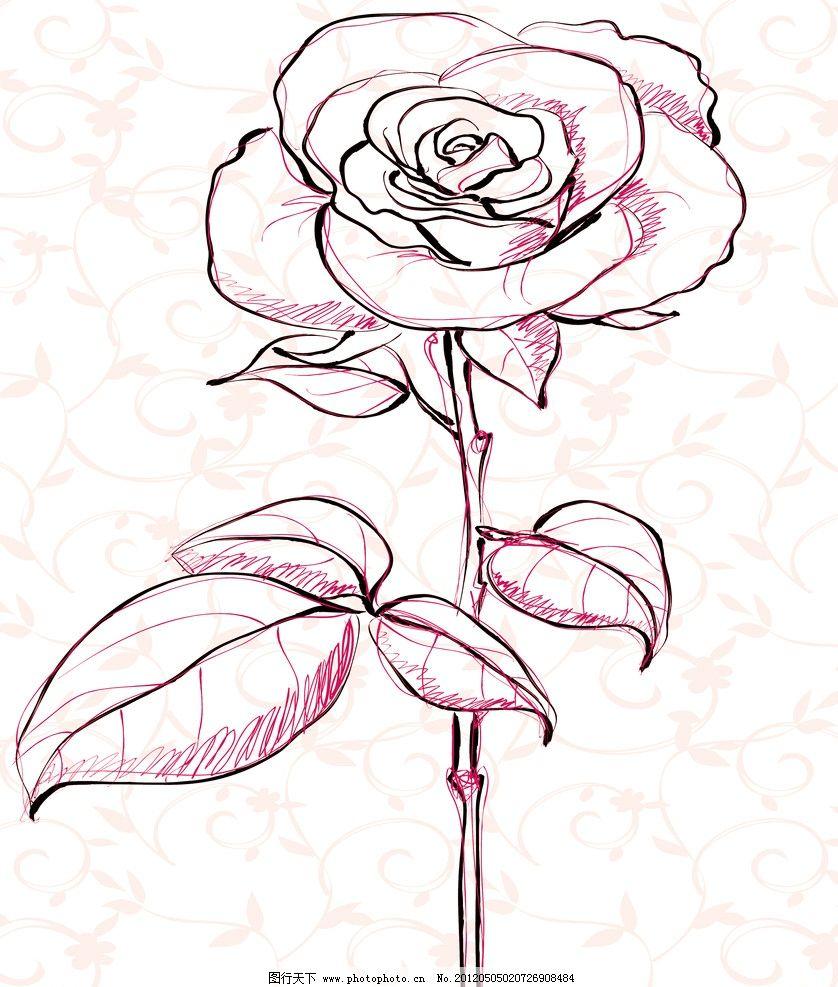 玫瑰之情 移门 玫瑰 花 线条 移门图片 移门图案 底纹边框 设计 70dpi