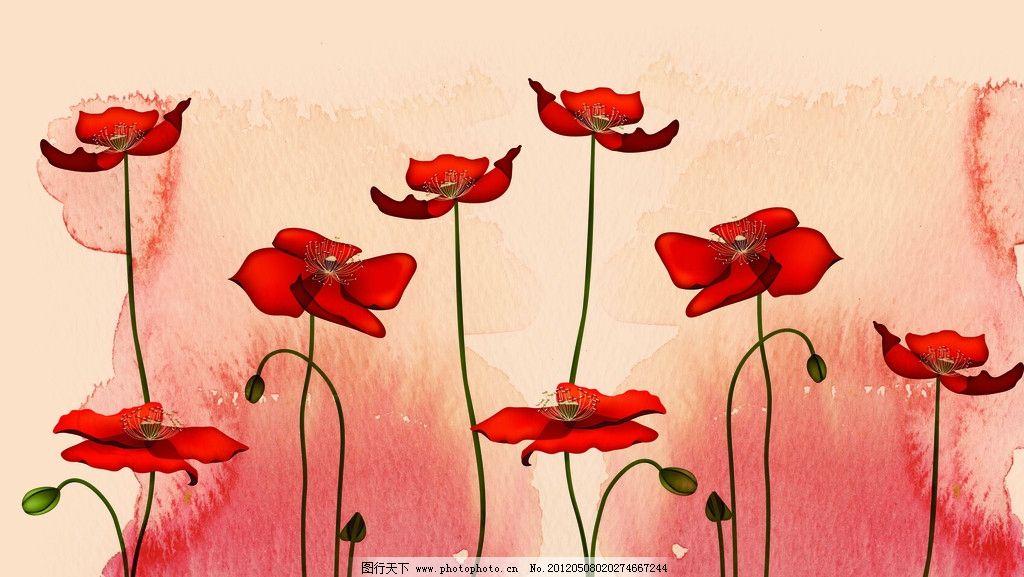 美丽花朵 红花 手绘 墨迹 背景 时尚花朵 花纹 罂粟花 大红色 复古