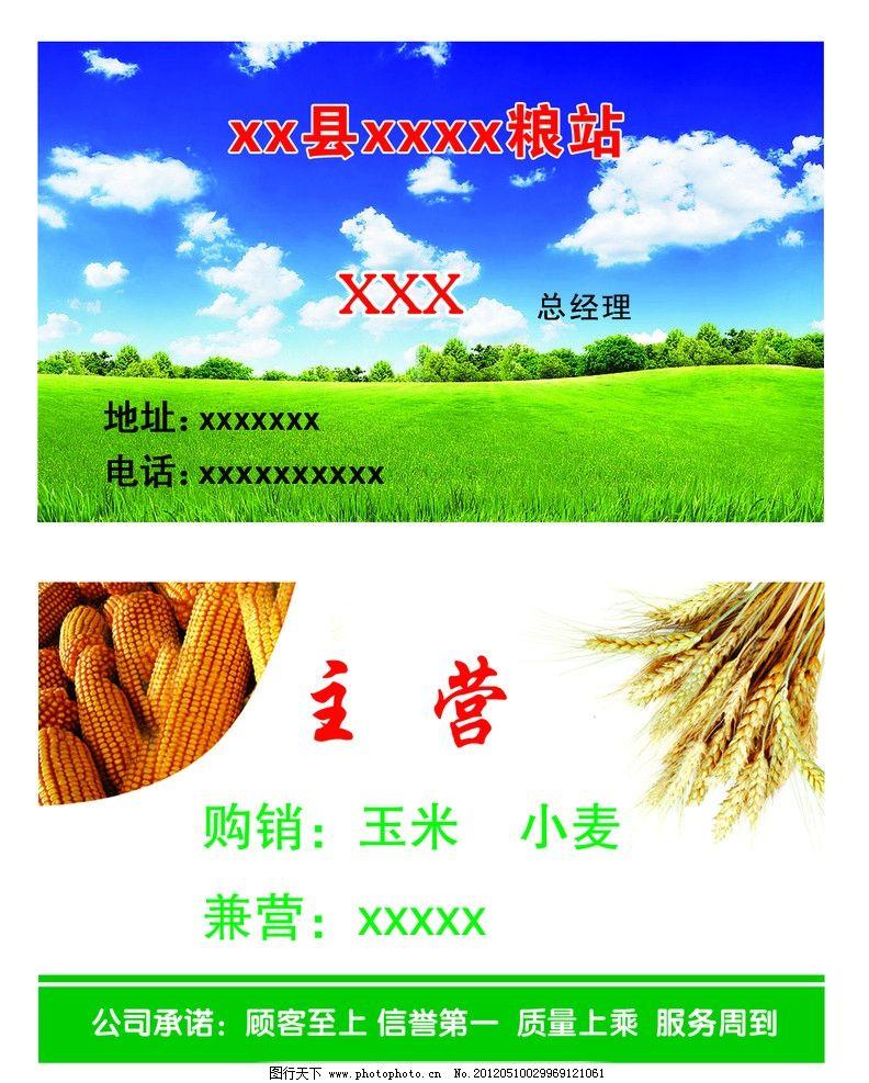 粮站名片 粮站 玉米 小麦 名片卡片 广告设计模板 源文件 300dpi psd