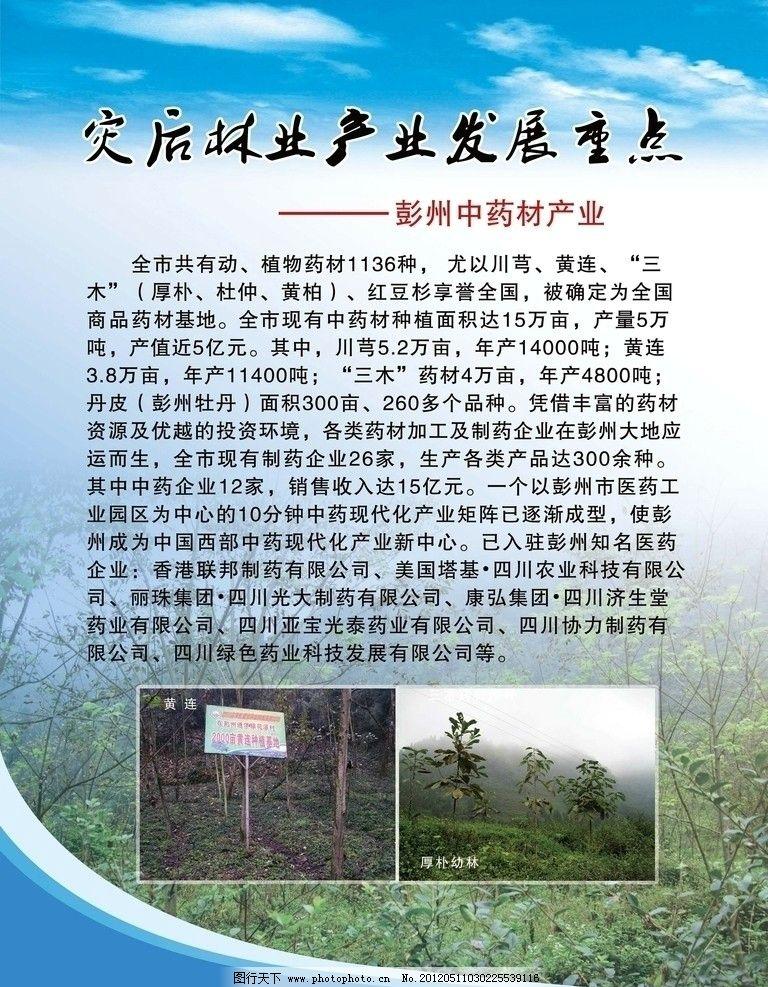 中药材产业 彭州林业发展重点 中药材 药材基地 时尚科技展板 线条