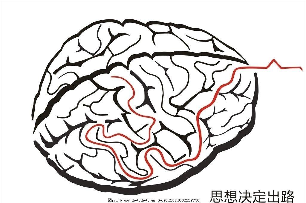 大脑 矢量图片