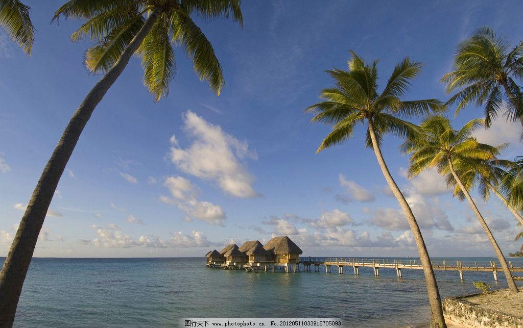 海南度假 风景 海海岛 海滨 椰树 风景之美 摄影 西岛 大海