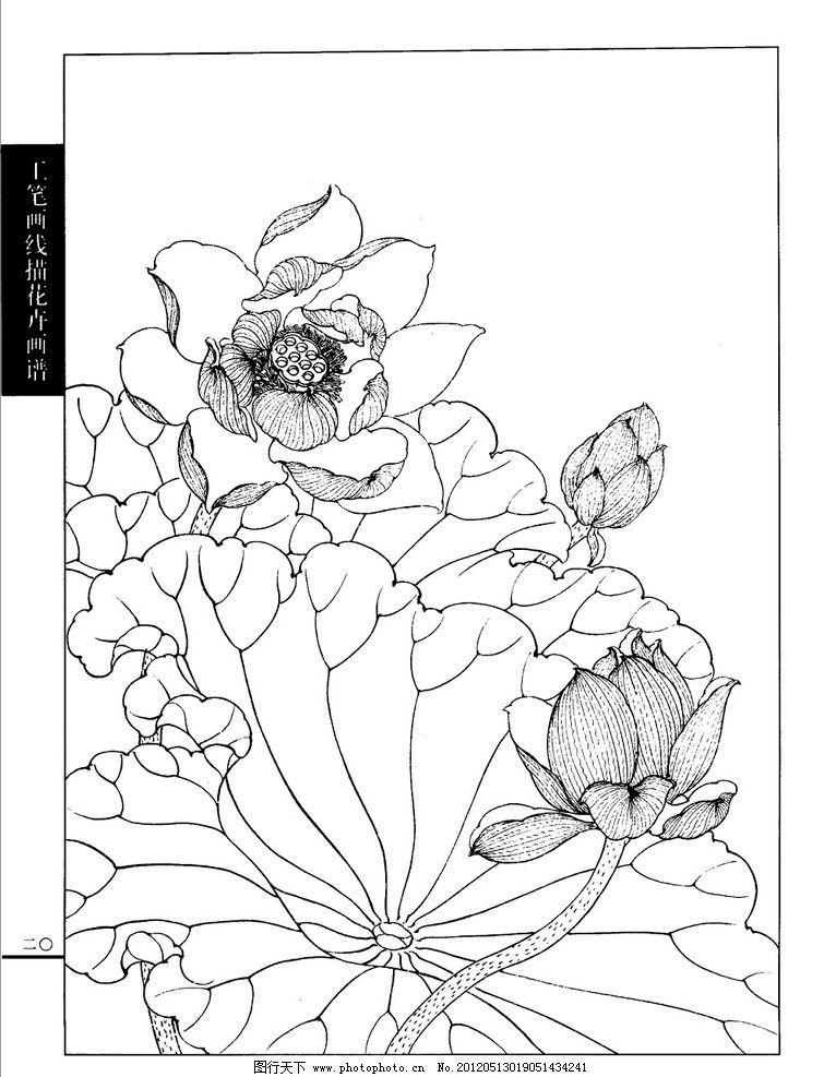 工笔荷花白描画谱 工笔 荷花 白描 画谱 线描 绘画书法 文化艺术 设计